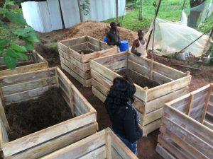 san compost bin 2